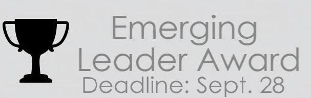 Emerging Leader Dull